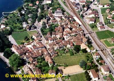 http://www.swisscastles.ch/aviation/Vaud/photo/cully.JPG